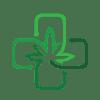 MMJ Certifications - Medical Marijuana Doctor - Card